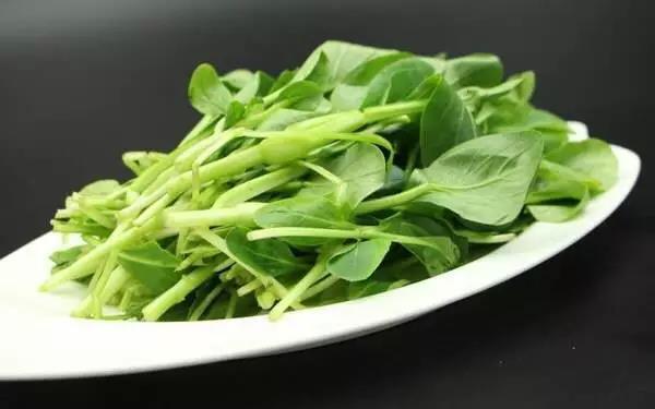 六和义营养师告诉你最美味的春季食材,你最爱吃哪个?